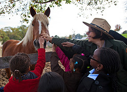 More Than Just a Field Trip: Interpretation for School Curriculum