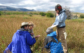 Natural Resource Management in Wilderness: Evaluating Proposals For Scientific Activity