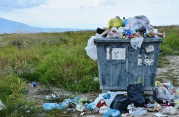 Environmental Health & Public Lands