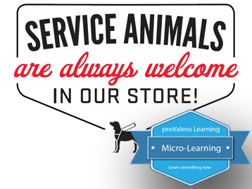 Accessibility Essentials #4: Service Animals and Mobility Devices