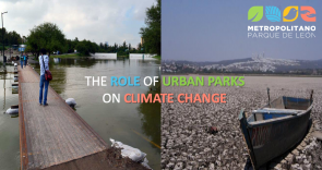 The Role of Urban Parks on Climate Change