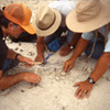 Evaluating Scientific Proposals for Paleontological Resources in Wilderness